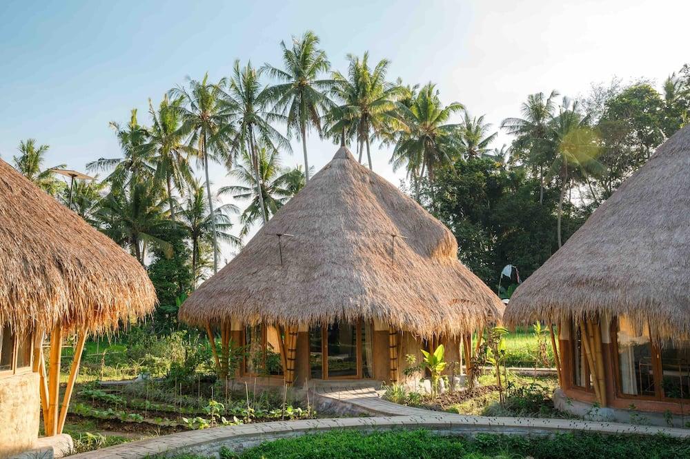 Mana Earthly Paradise - Hostel