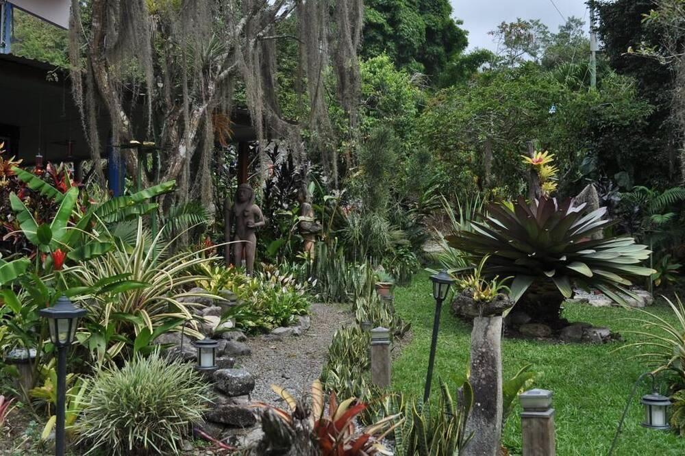 Phòng đôi tiện nghi đơn giản, Quang cảnh vườn - Quang cảnh vườn