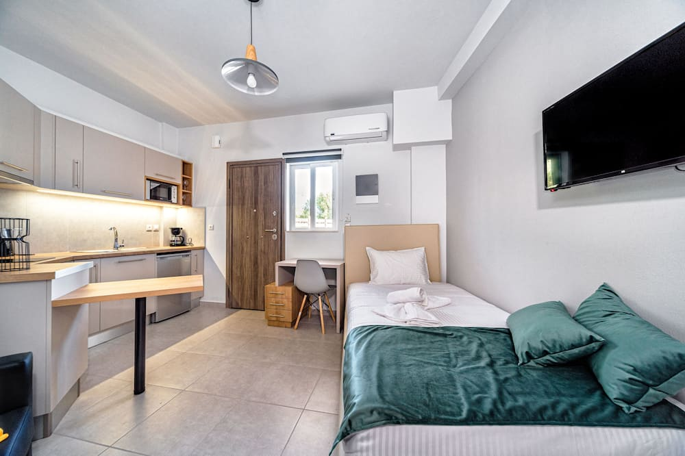 شقة إستديو عادية - منطقة المعيشة