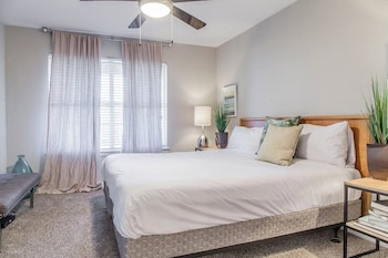 Picture of The Modern ATX Flats in Austin