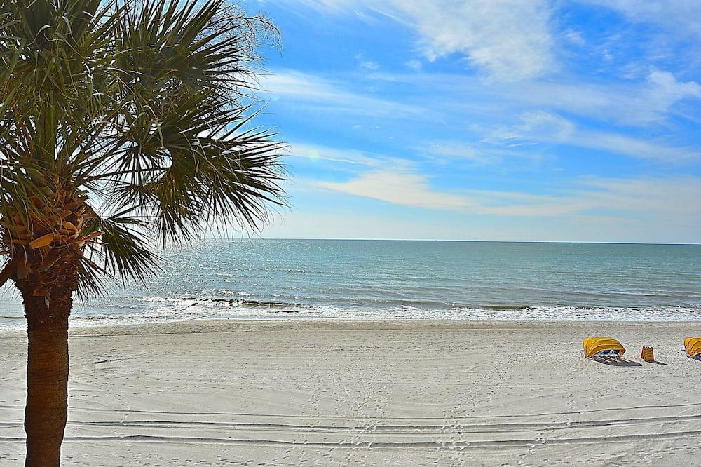 Apartment, Multiple Beds, Beach View (Trillium 2B Beach View from ALL rooms) - Beach
