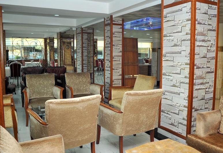 Lion City Hotel Ankara, Анкара, Лаундж готелю