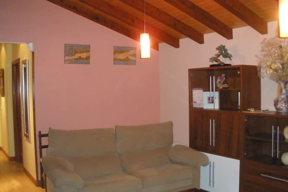 House (6 Bedrooms and 1 Apartment) - Living Area