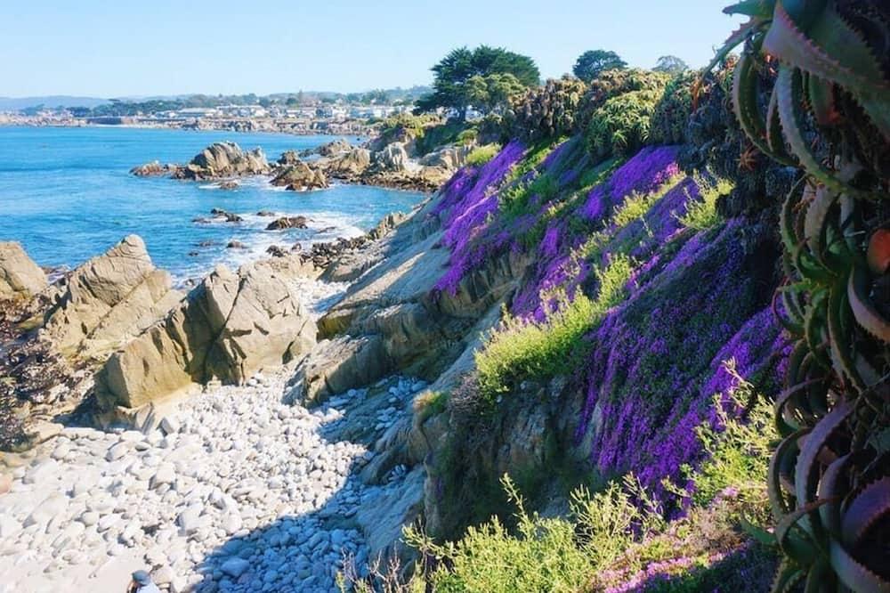 Domek wypoczynkowy, Wiele łóżek (MV6: Lover's Point Mermaid Cottage) - Plaża