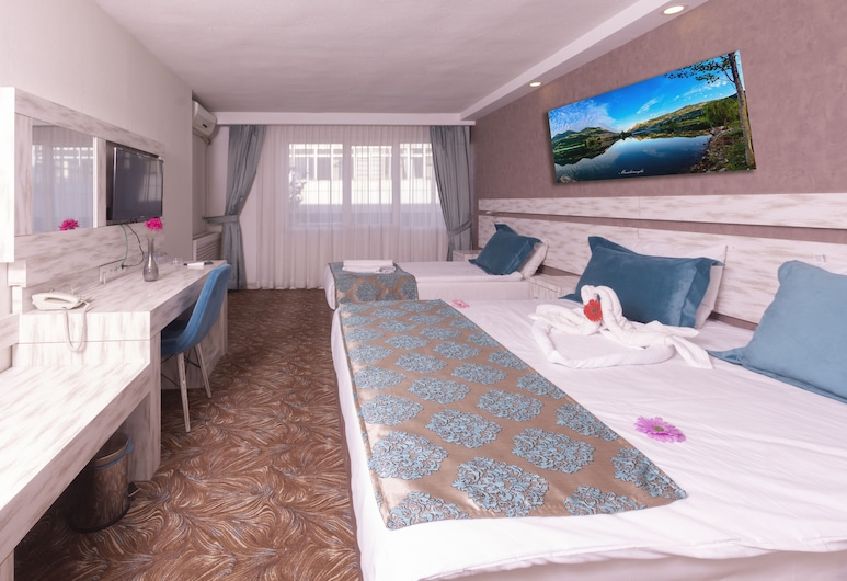 Grand Seray, Ankara, Double Room, 1 Double Bed, Guest Room