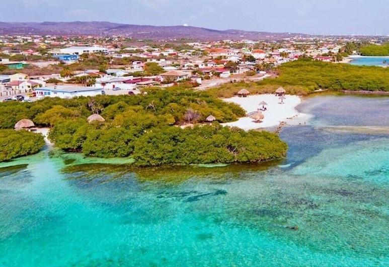 Sea Breeze Ocean Studio 1 at Mangel Halto Beach, Savaneta, Playa