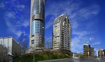 弗拉迪佛斯托克V 中央公寓酒店的圖片