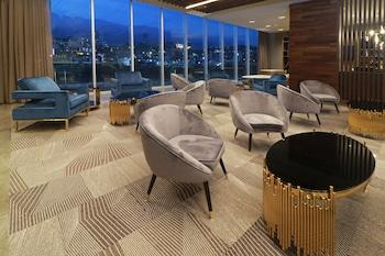 תמונה של Hilton Garden Inn Monterrey Obispado, Nuevo Leon, MX במונטריי