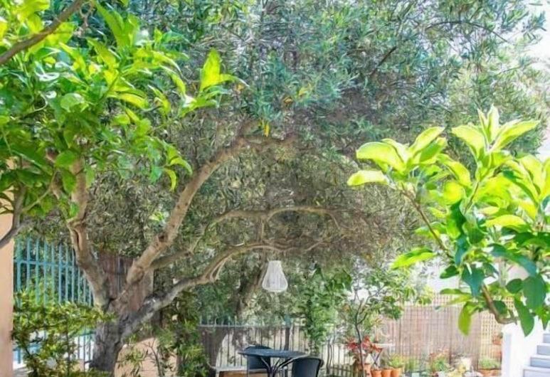 Σπίτι με κήπο στην Ανάβυσσο, Σαρωνικός, Κήπος