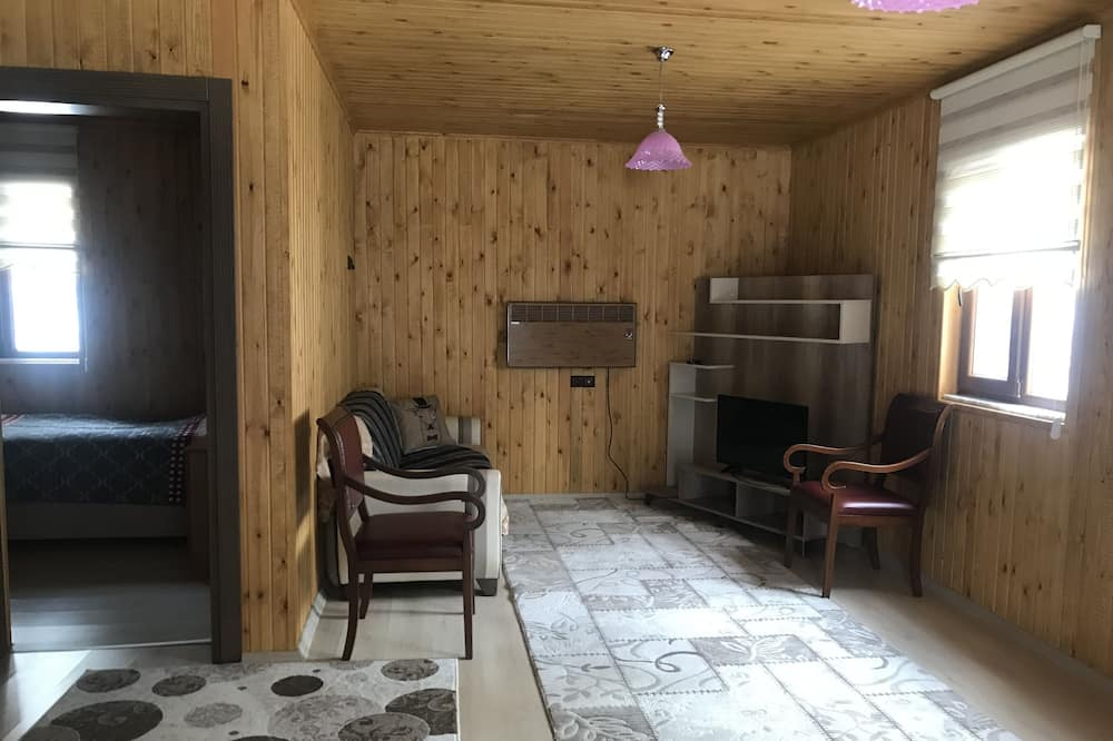Comfort-Ferienhaus - Wohnzimmer