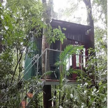 Imagen de The Green Tree B&B en Monteverde