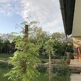 อพาร์ทเมนท์ - วิวสวน