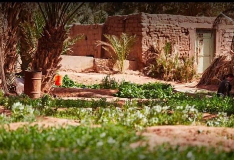 The Zaïd Garden, Tagounite, Puutarha