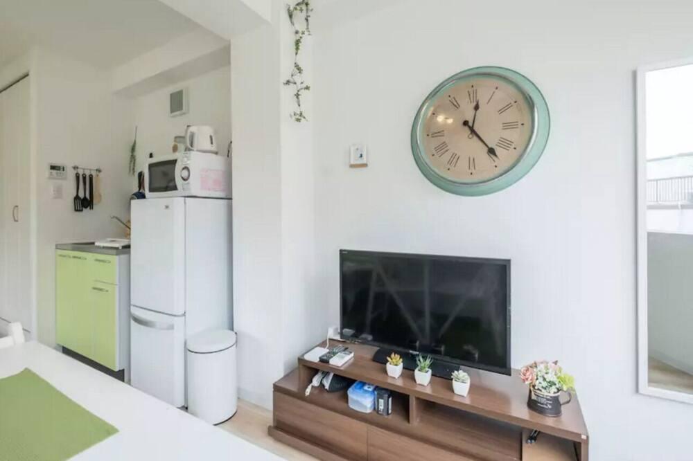 Apartment 401 - Television
