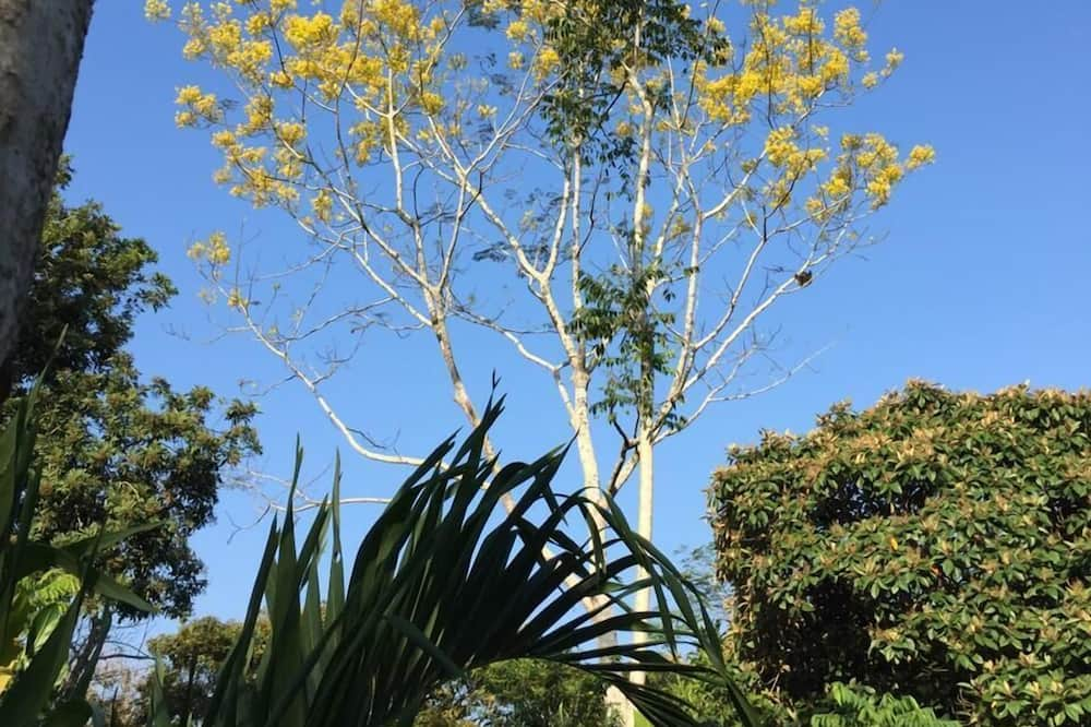 クラシック ダブルルーム - ガーデン ビュー