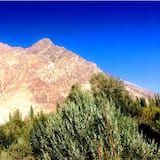 Habitación cuádruple familiar - Vista a la montaña