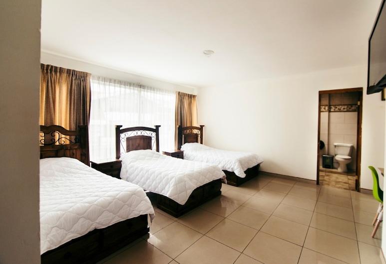 Hotel Terrazas Boutique, San Jose, Basic Triple Room, Bilik Tamu