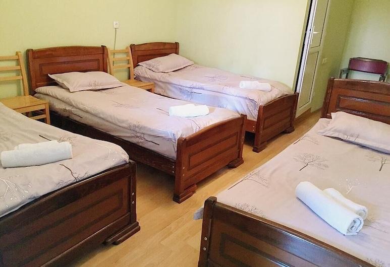 Lost inn kazbegi Hostel, Kazbegi, Comfort Shared Dormitory, Guest Room