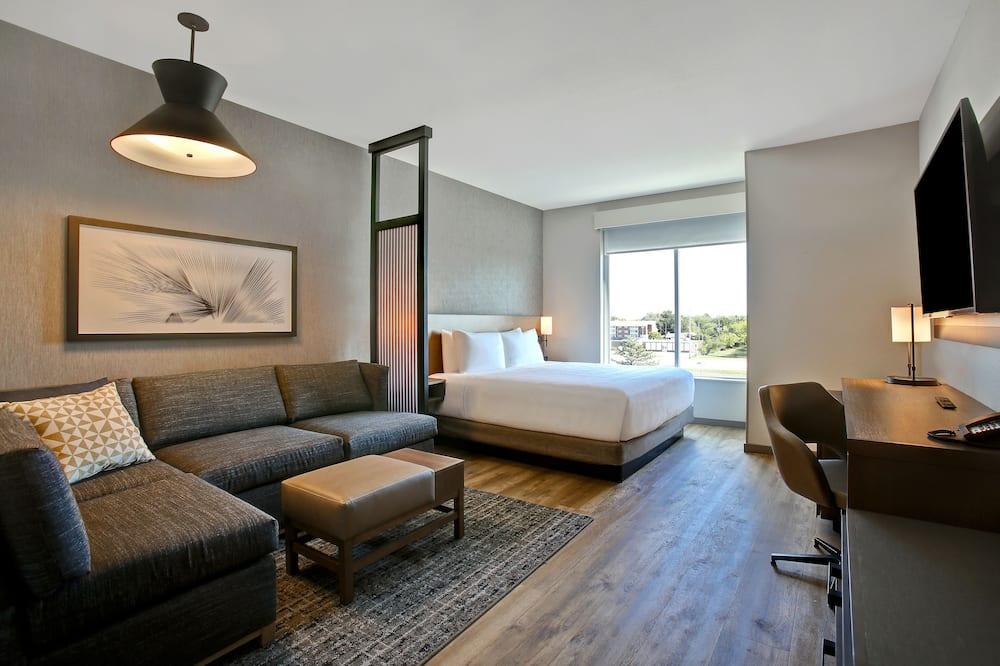 客房, 1 張特大雙人床和 1 張沙發床, 無障礙 (Shower) - 客廳