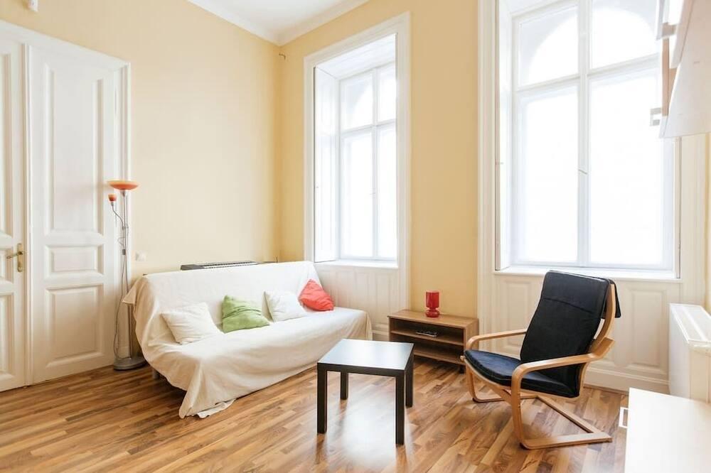 Dzīvoklis, viena guļamistaba - Dzīvojamā zona