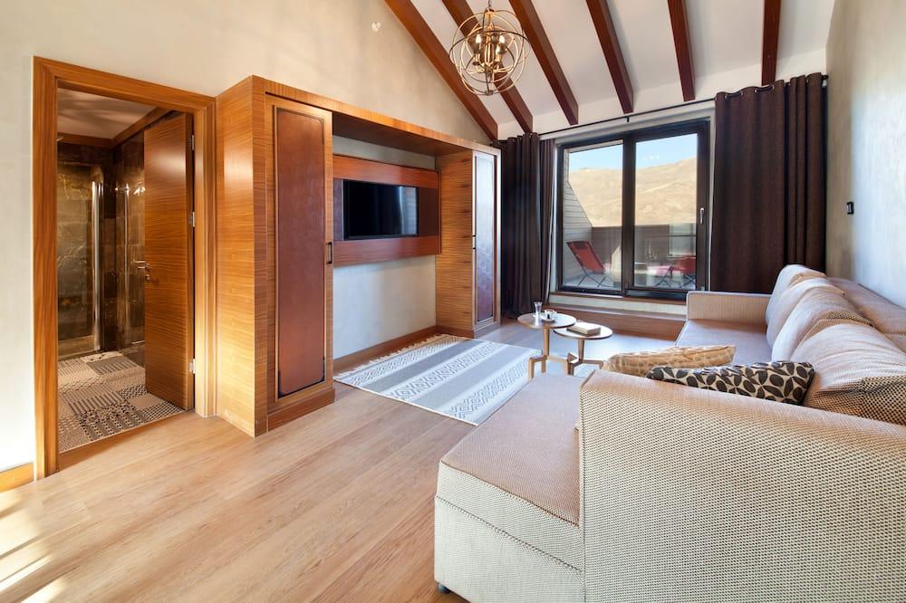 高級複式房屋 - 客廳