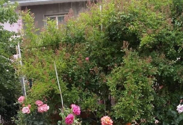 Guest House Fatima, Karakol, Garden