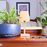 Beautiful Lush and Green Oasis Studio Apartment