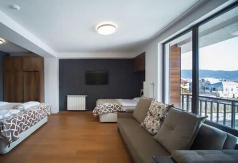 Apartments Nadim, Skopje, Departamento básico, Varias camas, vista a la ciudad, Habitación