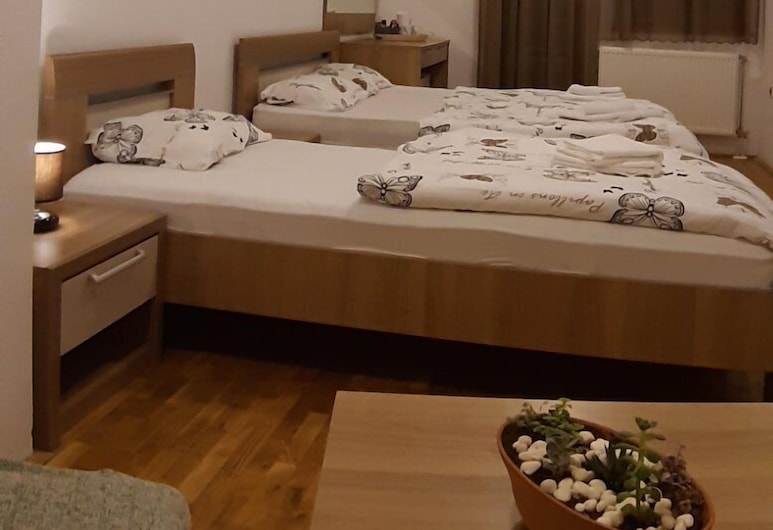 Vanessa, Novi Sad, חדר (R11), חדר אורחים