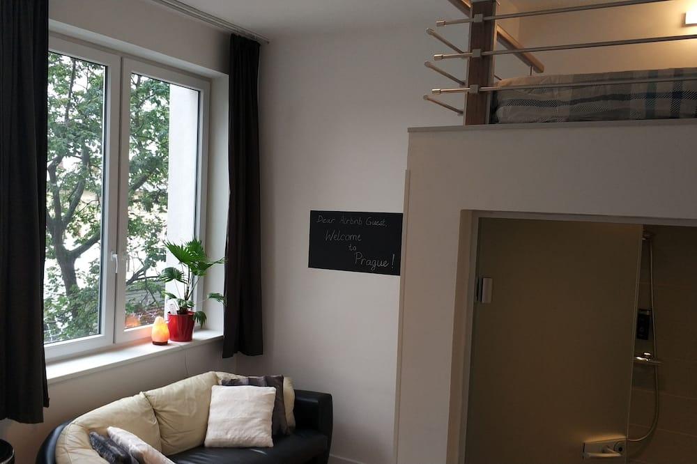 Luxurious Studio 15 min to Wenceslas Square!