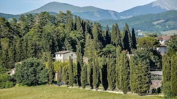 Bild vom Agriturismo Germogli - Tenuta di Fassia in Gubbio