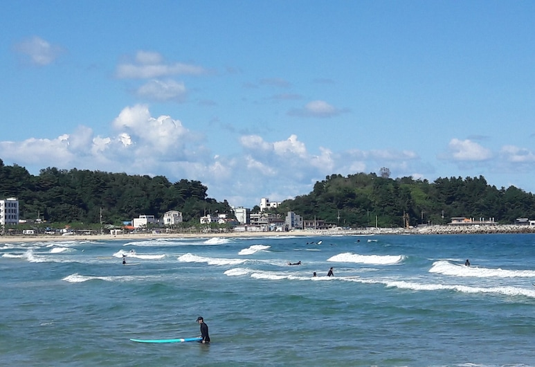 언덕위에바다 201 & 202, 양양군, 해변
