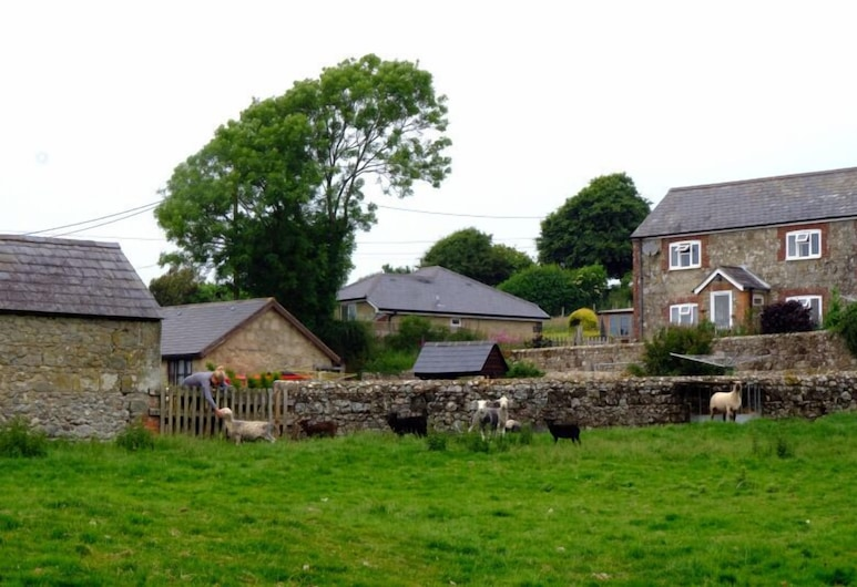 Nettlecombe Farm Holiday Cottages, Ventnor, Garden