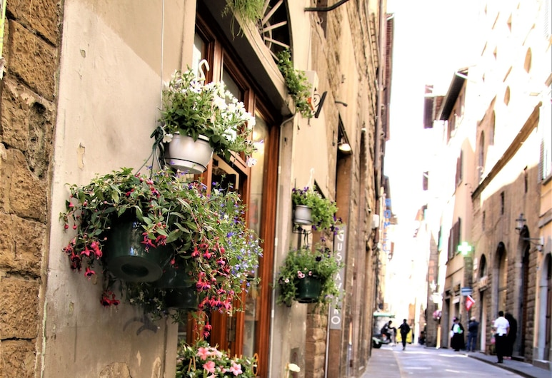 Renovated and modern-city center! Elevator,AC,WIFI, Florence, Property Grounds
