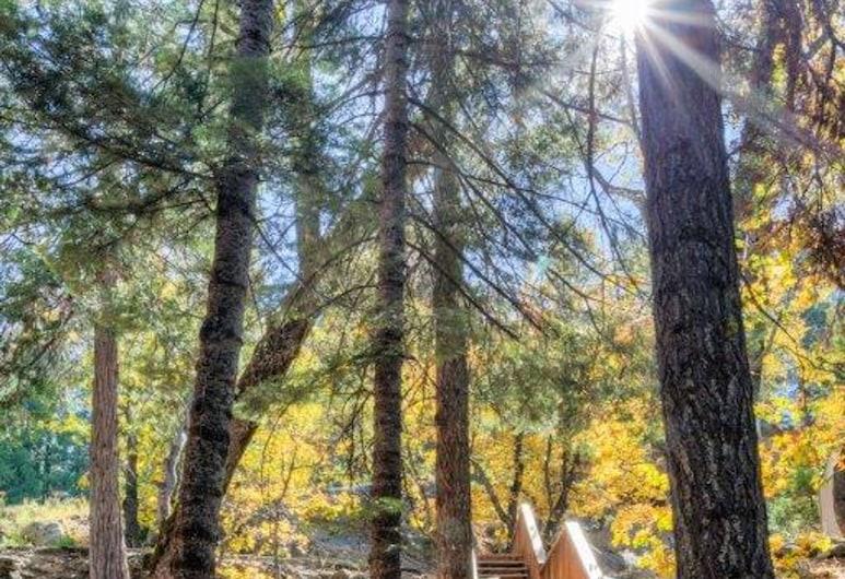 Forest Glen-yw, Nacionalni park Yosemite, Kuća, 1 spavaća soba, Okolica objekta