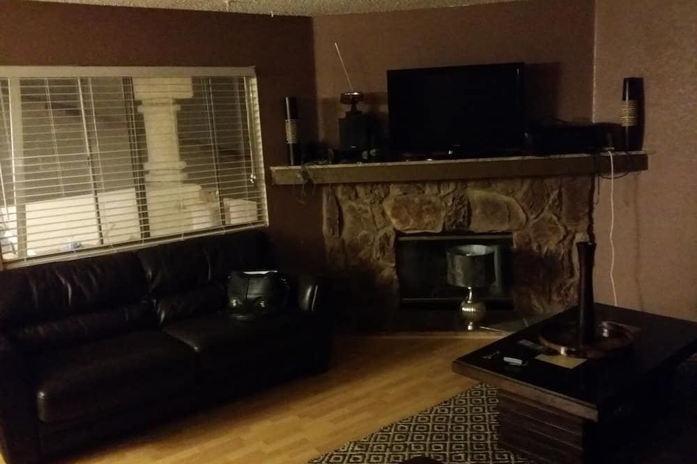 Basic Condo - Living Area