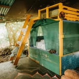 Dormitorio compartido, solo para mujeres, cocina, vista al parque - Habitación