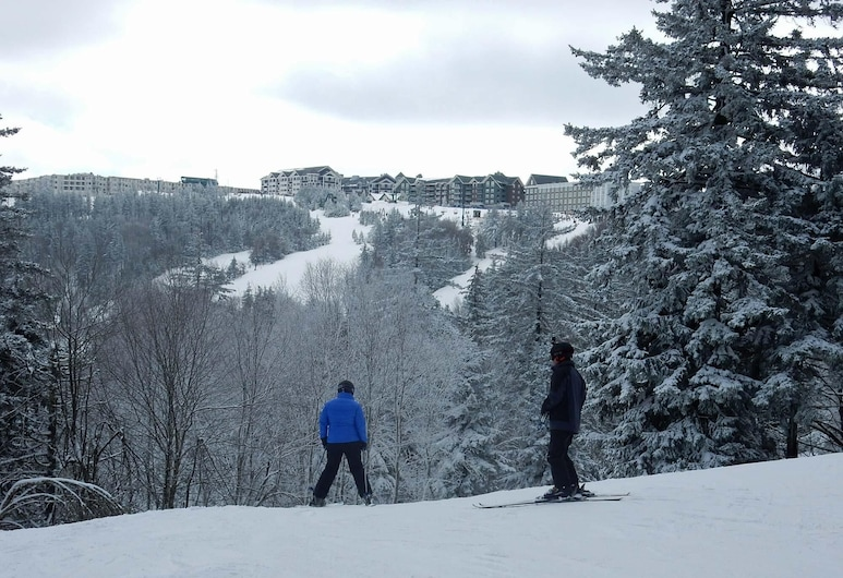 5 Bdrm: Black Bear Crossing #4, Snowshoe, House, Multiple Beds (5 Bdrm: Black Bear Crossing #4), Snow and Ski Sports