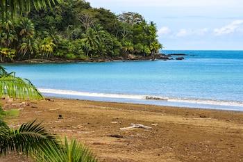 Fotografia hotela (Cotingas Ocean View) v meste Drake Bay
