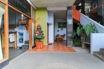 Bild vom deSeruni Guest House in Kerobokan