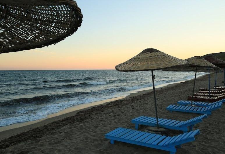 Surf Inn Gokceada, Гёкчеада, Пляж