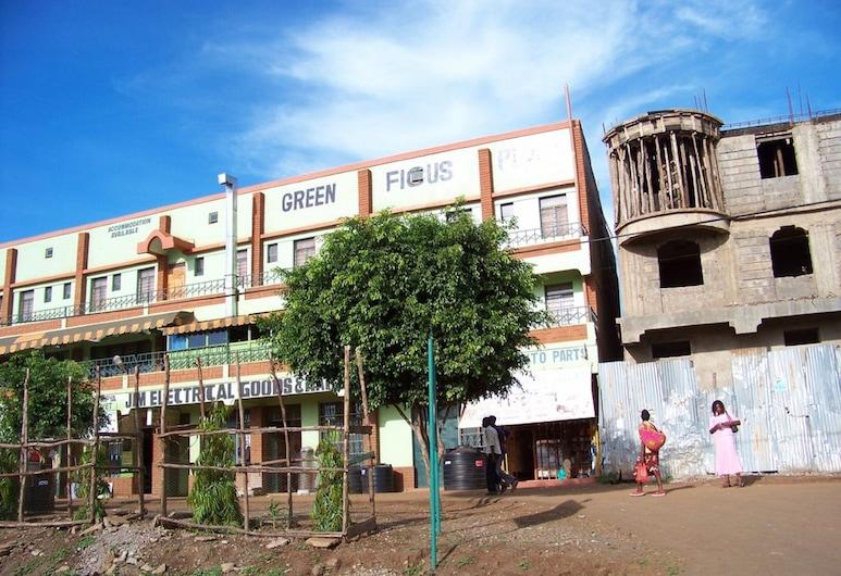 جرين فيكوس بليس, Wang'uru, واجهة الفندق