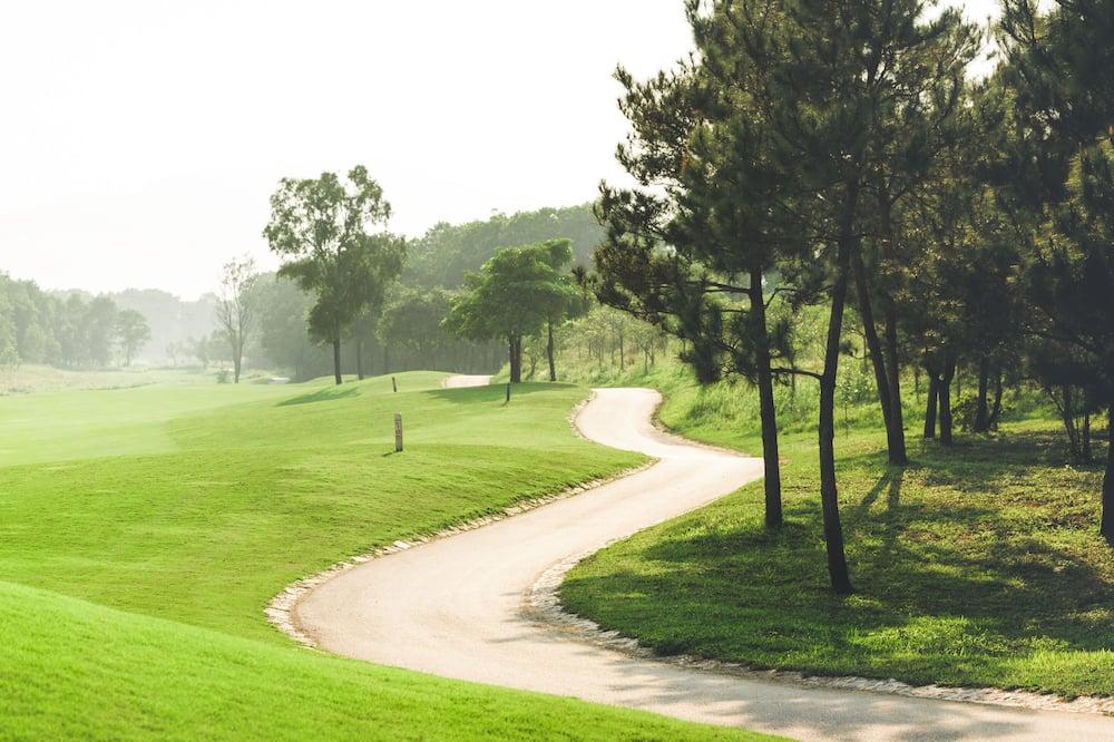 Studio, 1 lit une place (Resort) - Vue sur le parcours de golf