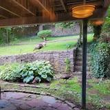 Izba typu Signature, 1 veľké dvojlôžko, nefajčiarska izba, výhľad na záhradu - Výhľad na záhradu
