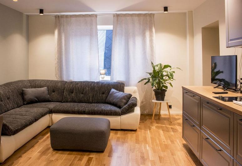City heart Ülikooli Tartu Home Apts., Tartu, Departamento urbano, 1 habitación, vista a la ciudad, Sala de estar