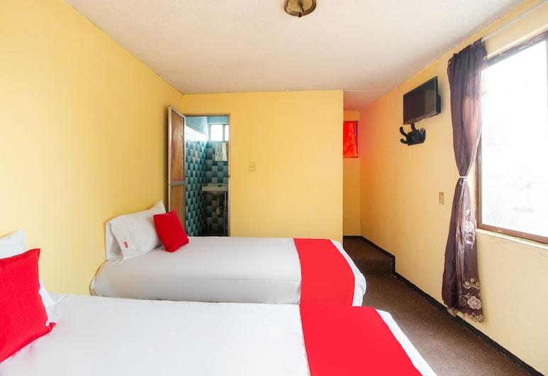 Hotel JL Candy, San Luis Potosi, Standardní pokoj, 2 jednolůžka, Pokoj