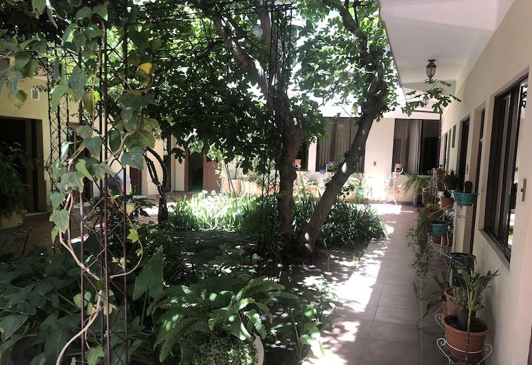 Hostal Aramayo, Tupiza, Garten