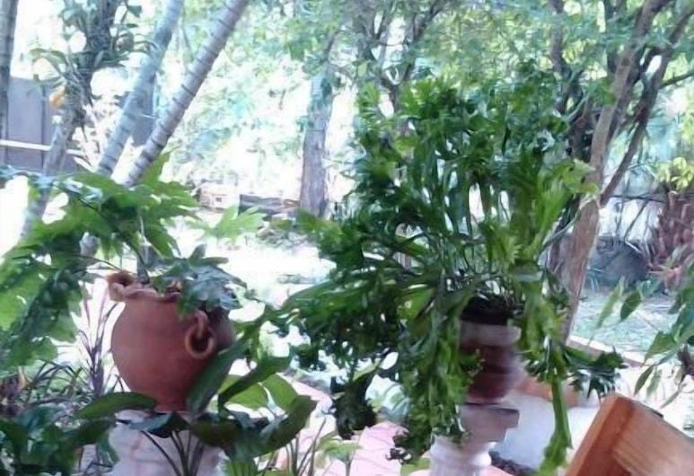 阿帕雷西達民宿飯店, 阿雷瓜, 傳統雙人房, 客廳