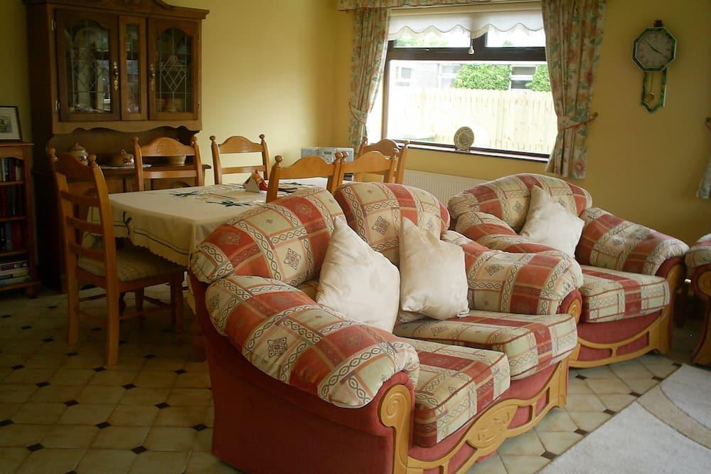 奢华平房 - 起居室
