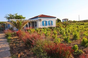 Picture of Ilgın Bag Evi in Bozcaada